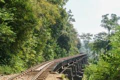 沿绿色森林的铁路在泰国 免版税图库摄影