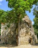 沿罗马废墟的散步在延命菊海岛 免版税库存照片