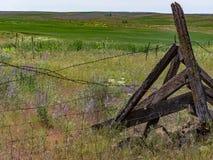 沿老fenceline的春天 库存照片