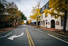 沿联邦街道的秋天颜色,在伊斯顿,马里兰 免版税库存照片