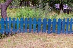沿草和植被的小蓝色装饰篱芭 免版税图库摄影