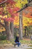 沿街道的长度的美丽的银杏树 免版税库存照片