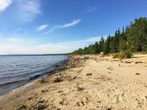 沿貂海滩和奴隶湖水的美丽的沙滩在阿尔伯塔北部,加拿大在一个温暖的夏日 免版税库存图片