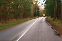 沿路有黄色叶子的,湿秋天路的树 库存照片