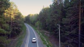 沿路的上部自动驱动和在松木的输电线 股票视频