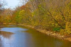 沿运河的树在秋天叶子 免版税库存照片