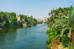 沿运河的绿叶 库存照片