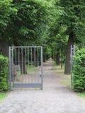 沿途有树的道路和开放门 图库摄影