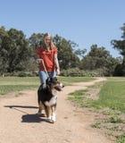 沿道路的妇女走的狗 免版税库存图片