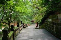 沿遮荫楼梯的地衣隐蔽的楼梯栏杆在森林 免版税图库摄影