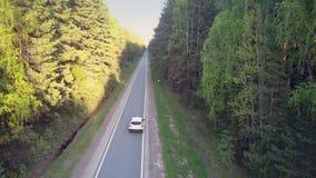 沿遮荫路的汽车驱动反对明亮的晴朗的森林边 影视素材