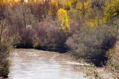 沿里奥格兰德的秋天颜色在亚伯科基 库存照片