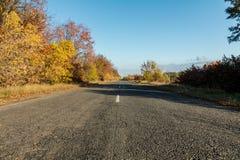 沿金黄冬麦的空的秋天路调遣在日落 免版税图库摄影