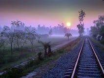 沿铁路的惊人的日出 免版税图库摄影