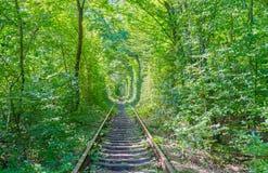 沿铁路的自然 库存图片