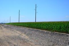 沿铁轨的麦地 免版税库存照片