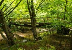 沿阿巴拉契亚足迹的一个新的远足者人行桥 免版税库存照片
