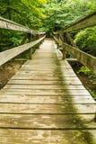 沿阿巴拉契亚足迹的远足者人行桥 库存图片
