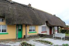 沿阿德尔,爱尔兰, 2014年10月街道的迷人的盖的村庄  库存照片