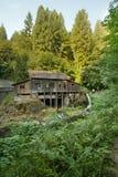 沿雪松小河森林段有历史的磨房 免版税库存图片