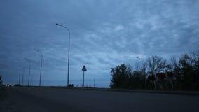 沿高速公路和母牛步行的汽车驱动沿路旁 股票录像