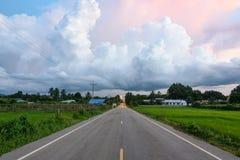 沿高速公路路的绿色稻田在晚上天空下在一个雨天 库存图片