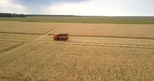 沿黄色麦田的卡车驱动反对风景 影视素材