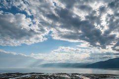 沿水岸的风景 免版税图库摄影