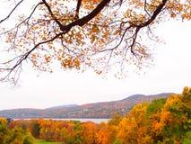 沿水的秋天 库存照片