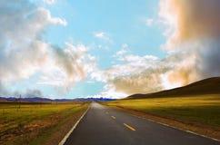 沿绿色草甸的弯曲道路 免版税库存图片