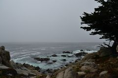 沿17英里驱动的海岸线 库存图片