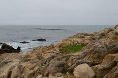 沿17英里驱动的海岸线 免版税库存图片