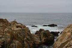 沿17英里驱动的海风景 图库摄影