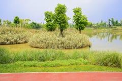 沿细长的红色道路湖岸在晴朗的春天 免版税库存照片