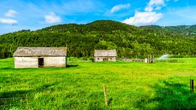 沿BC Heffley路易斯小河路的老谷仓,加拿大 免版税库存照片
