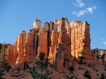 沿bryce峡谷洞青苔线索 库存照片