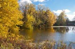 沿Dog湖入口的秋天 图库摄影