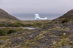 沿Fogo海岛海岸线的冰山 库存照片
