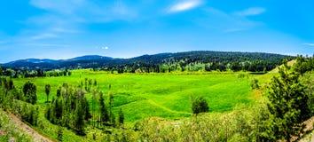 沿Heffley路易斯小河路的山在BC加拿大 免版税图库摄影