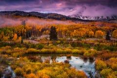沿Kebler的秋天 库存图片