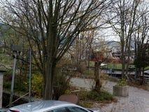沿Oosterdok水的树与居住船在阿姆斯特丹市 免版税库存照片