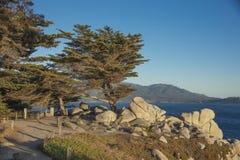 沿Pescadero点的道路17英里驱动加利福尼亚 免版税图库摄影