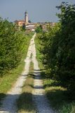沿Po周期道路的农村风景 库存图片