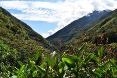 沿Salkantay艰苦跋涉的安地斯山的山风景向马丘比丘,秘鲁 库存图片