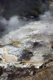 沿Waimangu河的通入蒸汽的热点 图库摄影