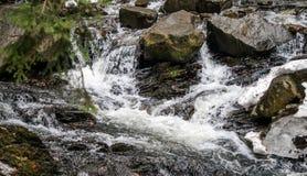 泉水小河 有急流的山河 免版税库存图片