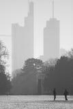 法兰克福公园冬天 免版税库存图片