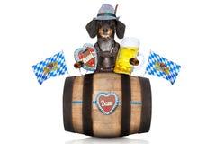 巴法力亚啤酒桶 免版税库存图片