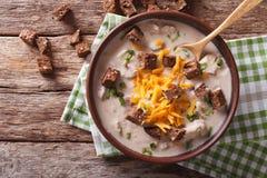 巴法力亚啤酒汤用乳酪和烟肉接近在碗 贺尔 库存照片