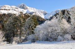 法国中央高原的风景在冬天 免版税库存照片